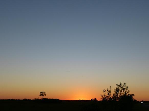 Abenddämmerung in den Everglades